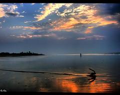 Extravagant dawn (Ritu's Lens) Tags: light sea reflection beach nature sunrise lumix sand panasonic rays westbengal fz50 mandarmani marumipolarizer
