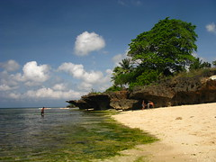 Beach Philippines Siquijor (hn.) Tags: ocean trees sea copyright tree beach nature water strand island restaurant hotel coast sand asia asien heiconeumeyer meer seasia soasien southeastasia sdostasien wasser philippines natur resort insel sanjuan palmtrees pi shore palmtree coastline coconuttree palme visayas pilipinas gastronomie gastronomy kste sandybeach philippinen sandbeach beachresort copyrighted palmen thephilippines siquijor cocogrove ozean sandstrand visayan kokosnusspalme oceanshore coconutpalmtree tubod siquijorisland centralvisayas tp0708 siquijorprovince cocogroveresort