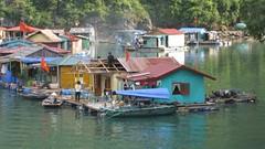 Ha Long Bay residents