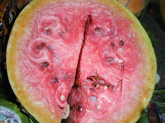 Yucky Watermelon