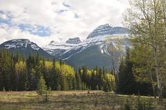 Bow River Valley (BsidetheC) Tags: rockies banff banffnationalpark canadianrockies