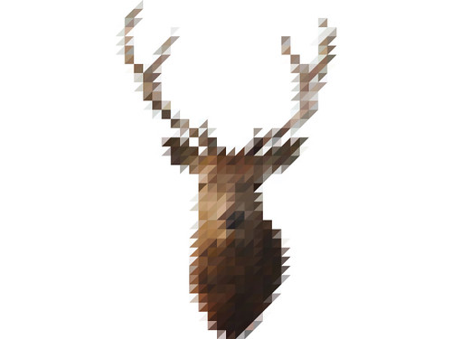 The Sliced Pixel Project Stag