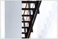 1103 - Stairs. (go4silver) Tags: leica stairs hamburg m treppe 365 schatten bro m240 schwadow