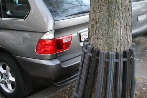 Tree bump