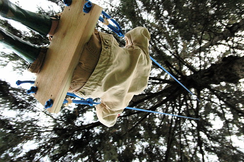 day 1230: the most super awesomest tree swing.  EVAR!