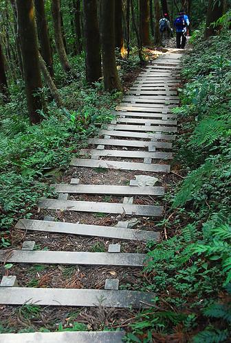 走不完的階梯