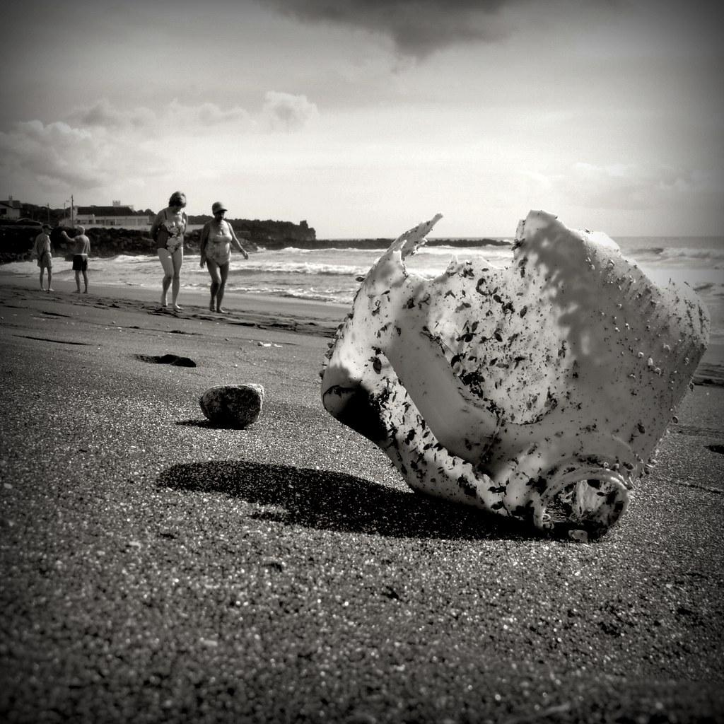 meetings of beach #5