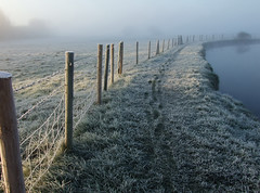 Early winter walk - Thames path (macfudge1UK) Tags: uk winter england mist nature thames river interestingness bravo europe frost path walk earlymorning explore riverthames oxfordshire breathtaking thamespath 2007 oxon swinford allrightsreserved anawesomeshot swinfordtollbridge excapture goldstaraward scenicsnotjustlandscapes natureselegantshots spiritofphotography
