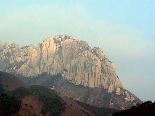 Korea (386)