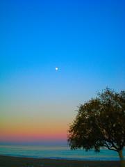Afantou beach - Rhodes Greece (pantherinia_hd Anna A.) Tags: sunset sea vacation sky moon tree beach colors island mediterranean aegean hellas greece rhodes rodi breathtaking   blueribbonwinner     10faves    35faves  abigfave  platinumphoto anawesomeshot aplusphoto superbmasterpiece diamondclassphotographer flickrdiamond ysplix ilovemypic photofaceoffwinner colourartaward betterthangood theperfectphotographer afantou goldstaraward