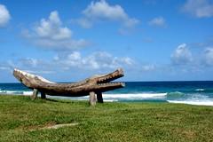 Jacar de Porto/Porto`s Alligator ( Anderson Carvalho) Tags: wallpaper brazil sculpture praia beach southamerica de landscape escultura porto pernambuco jacar galinhas fotoclube araquem diaadiabrasileiro
