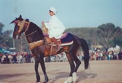 Le petit cavalier   (Opusbey) Tags: algeria fiesta algerie hors aflou laghouat