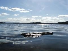 Stone in the Loch (william smith1) Tags: scotland lochlomond luss