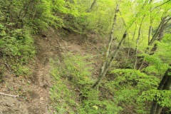 穴路峠のトラバース道