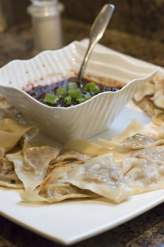 turkey dumplings with cranberry soy sauce