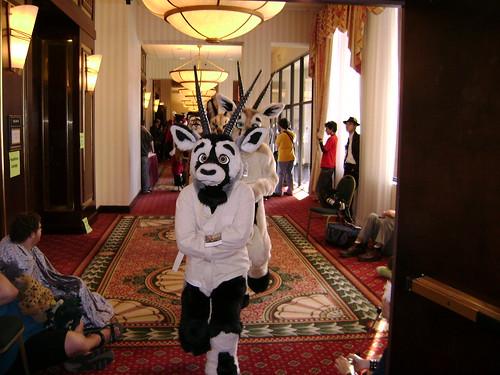Oryx in a straightjacket