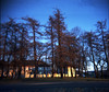 Lade gård (burgerno) Tags: trees sunset norway photoshop norge holga toycamera negativescan trondheim lade holga120cfn norja kodakportra400nc silverfast ladegård canoscan8600f reitan