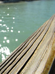 glistening water (yellow_birds) Tags: ocean blue vacation sky dog cute love beach beagle dogs gulfofmexico water animals keys gulf princess weekend getaway adorable deck cameron villa romantic miko islamorada tiffany coconuts floridakeys englishcockerspaniel thekeys whitegatecourt