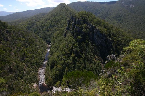 Alum Cliffs State Reserve. Central Tasmania.