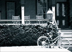 Made it home (M. Longfellow) Tags: snow bicycle newjersey nj capemay jerseyshore capemaycounty capemayx