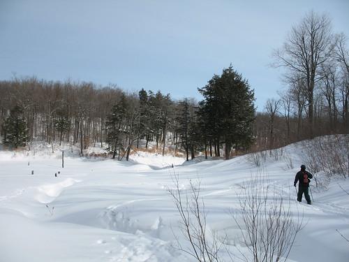 Backwoods ski
