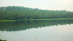 akkulam (thejasp) Tags: india lake reflection green coconut kerala indien coconutpalm trivandrum backwater southindia keralam waterscape southasia  akkulam   indiatravel    thiruvananthapuram indiatourism  akulam  sdindien  zuidindia aakulam   akkulamlake akkulamtouristvillage          suurindland