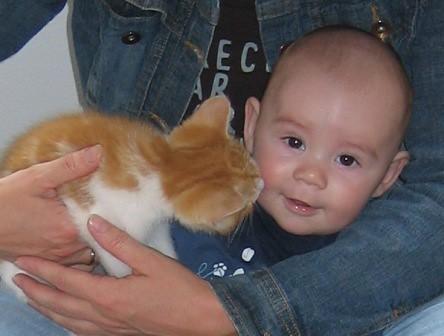 Kinderen minder allergisch door stoeien met huisdieren