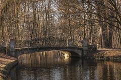 old bridge (hjuengst) Tags: bridge stonebridge winter water creek stream trees reflection touchofspring munich bavaria germany nikond7200
