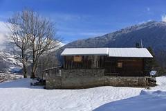 Le Pettet (bulbocode909) Tags: valais suisse lepettet vollèges alpages paysages arbres nature forêts chalets hiver neige montagnes bleu valdentremont