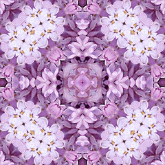 lilac lace love copy (SueO'Kieffe) Tags: nature digital photoshop patterns kaleidoscope mandala spirituality