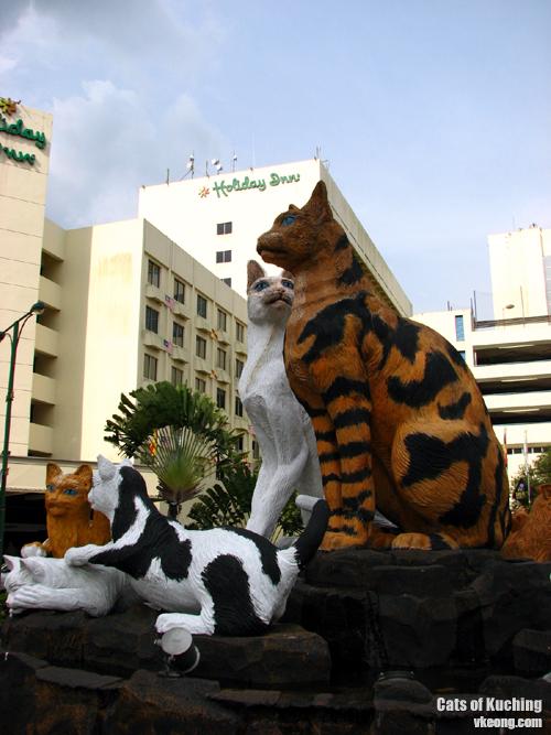 Kuching-North-City-Cat-Stat