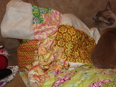 RB on my hand quilting project