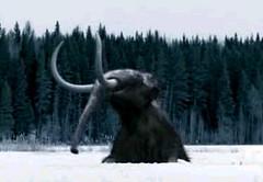 02 mammoth fell