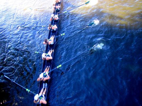 8 girls rowing