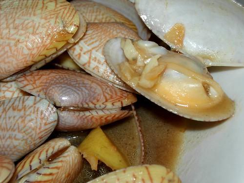 lala clams