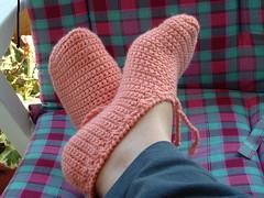 croc.socks