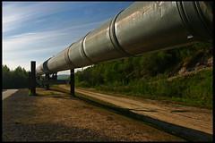 Trans-Alaska Oil Pipeline by rickz