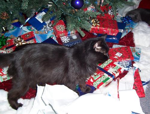 A Very Hairy Christmas 03
