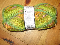 Noro Sock Yarn 4