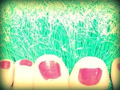 mi cesped artificial (La cmara lcida) Tags: red selfportrait verde green grass rojo autoretrato nails pies cesped uas