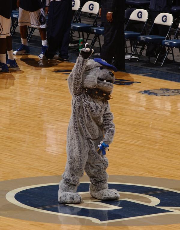 Georgetown Hoya Mascot Grabbing His HoyaNuts