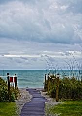 DSC_5700t.jpg (Patti Sullivan Schmidt) Tags: ocean sea inspiration beach weather cl