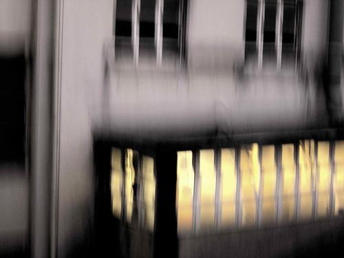 DSC01826© fatima ribeiro2008