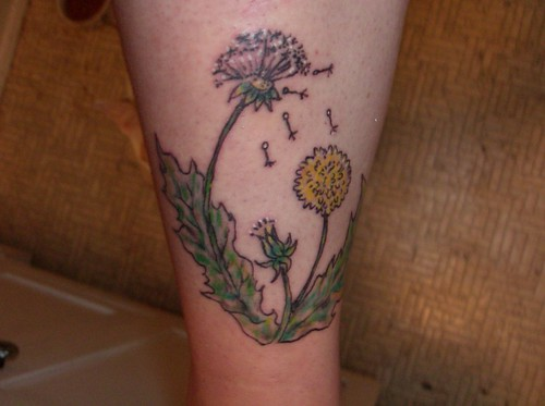 Gorilla and waterfall · A gorilla catcher · Dandelion Tattoo