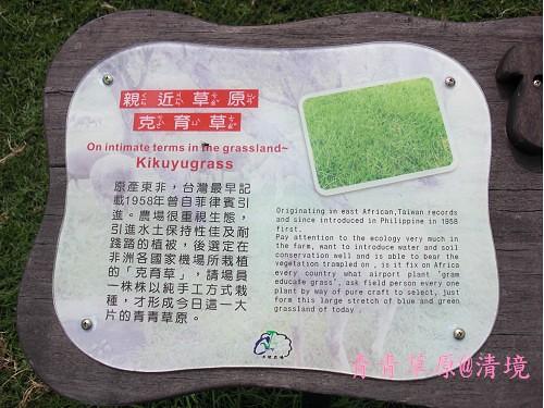 青青草原CIMG2732