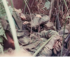 snooze (eks4003) Tags: bush war kill nap vietnam jungle marines m16 nam semperfi ambush recon