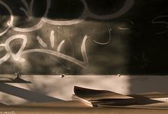 Colegio Abandonado de San Andrés. Zaragoza (Jorge Sesé (ASemTa Fotografía Cofrade)) Tags: olympus zaragoza colegio e300 andres olvido andrés quedada abandono sanandres sanandrés miralbueno colegioabandonado fz080814 fotografosdezargoza