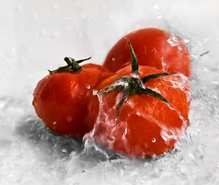 Tomato bath ([Kantor]) Tags: motion water horizontal closeup canon tomato spain agua tomatoes nopeople fresh tomates gotas whitebackground studioshot waterdrops malaga fresco foodanddrink tomate freshness purity kantor splashing healthyeating colorimage 400d