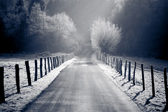 . (*Sabine*) Tags: road trees winter germany landscape deutschland europa europe frost strasse nrw landschaft bume bergischesland raureif solingen hoar reif nesselrath goldenphotographer life~asiseeit auswahl:jahr=2008 year:uploaded=2008 sabinesteinmller