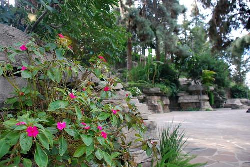 L.A. Police Academy Rock Garden